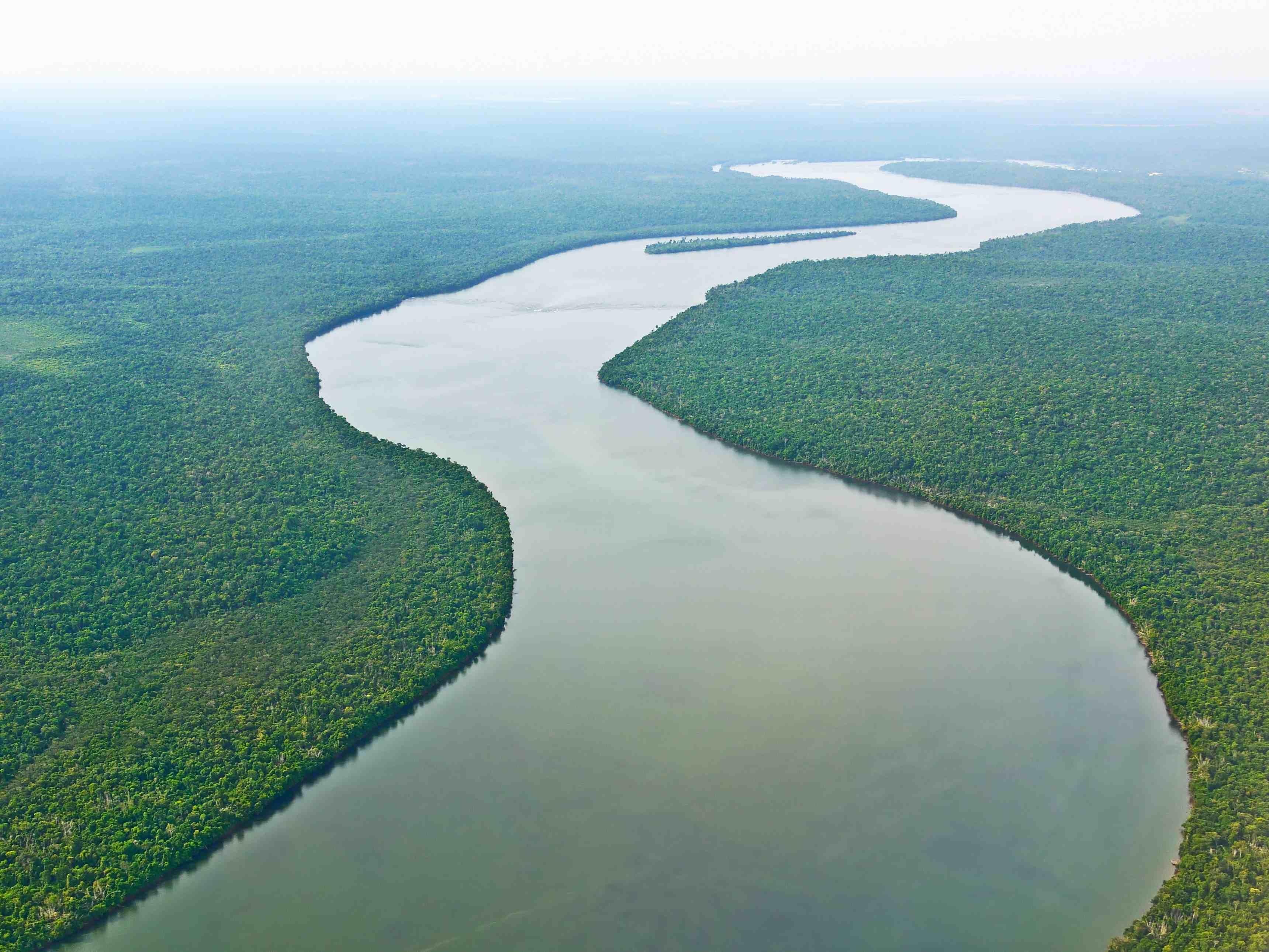 Lebensraum Fluss: Von der Quelle bis zur Mndung